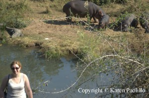 Kirsty and her adopted hippo : Cheeky
