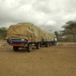 Hay arrives at Hippo Haven by truck