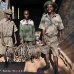 Anti poaching scouts and their collection of snare for one month