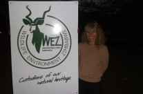 June 2014 : Wildlife & Environment Zimbabwe welcomes Karen in Harare