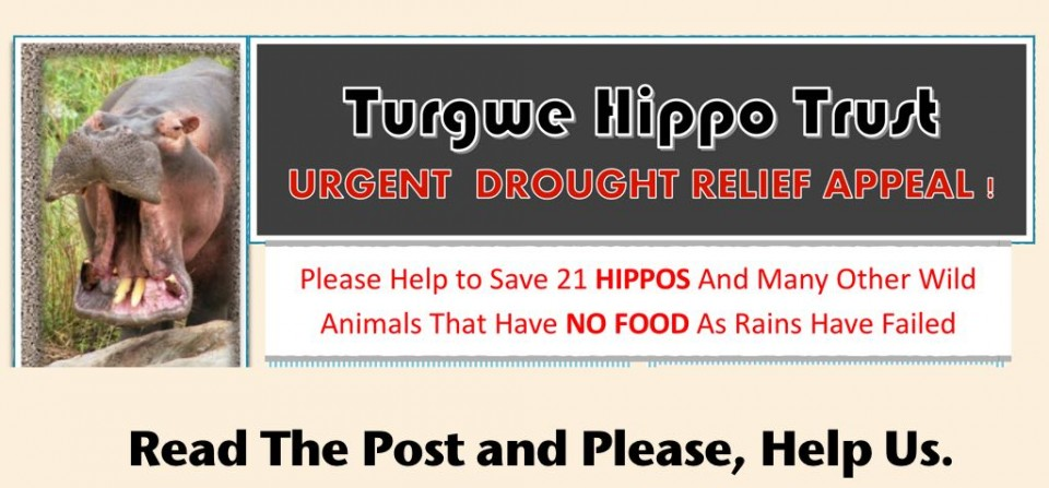 Urgent Need for Help : Severe Drought