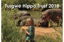 New 2018 Turgwe Hippo Trust Calendar is Available